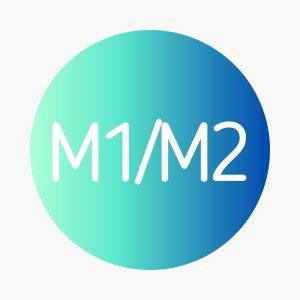 DSE M1/M2 數學延伸一/二